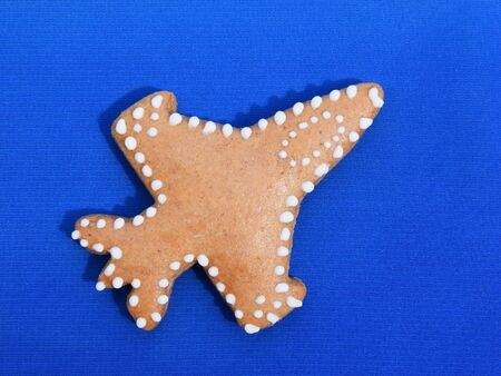 Gingerbread fighter plane on blue