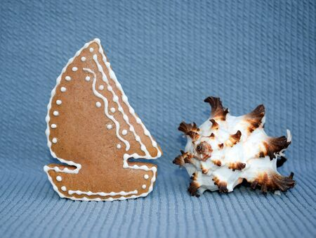 Gingerbread sailing boat and sea shell - summer sea concept