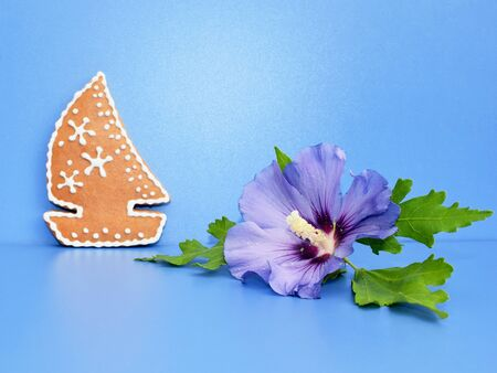 Romantic composition with hibiscus flower and gingerbread boat 写真素材