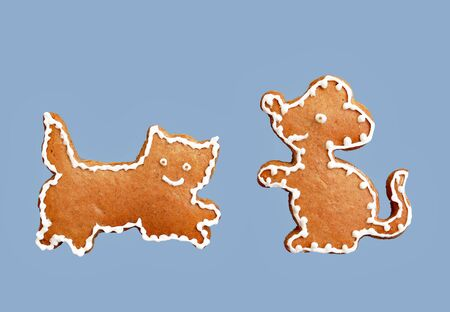 Cat and mouse - gingerbread cookies