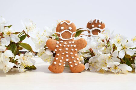 Gingerbread men with protective face mask surrounded by spring blooming twig - concept in coronavirus (COVID-19) time
