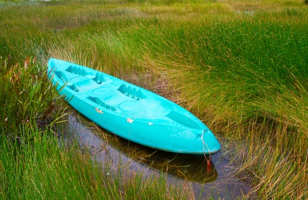 kayak strand in the pond photo