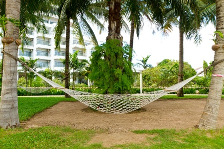 decoraton: hammock