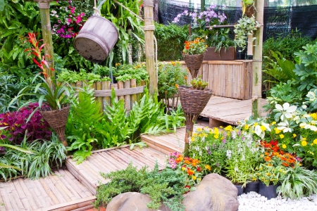 bassin jardin: jardin tropical