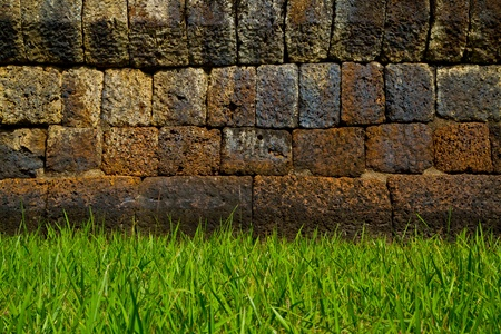 Green grass and vintage wall Stock Photo - 11488357