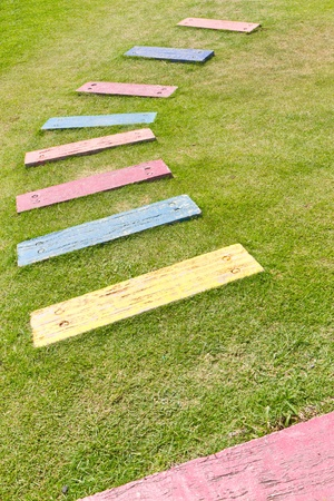 colorful path on green grass Stock Photo - 11865024