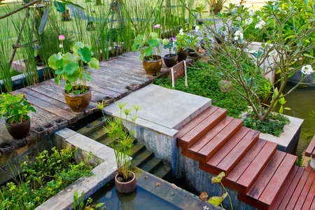 beautiful garden photo