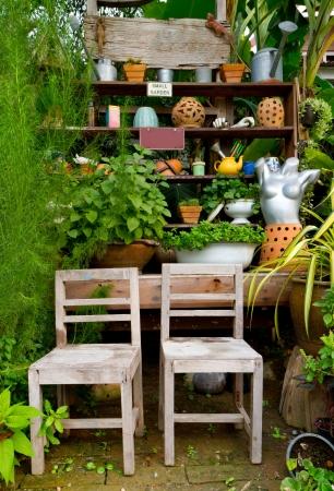 piccolo giardino verde per la decorazione domestica