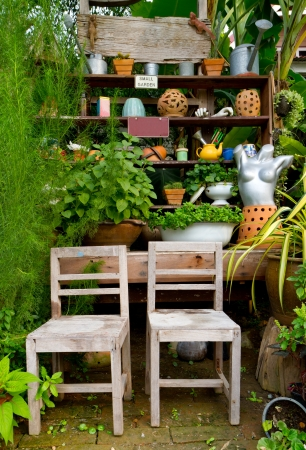 small green garden for home decoration