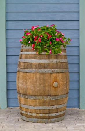 wooden barrel with beautiful flowers Stock Photo - 13995415