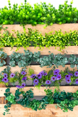 surrounding: beautiful flowers and fence