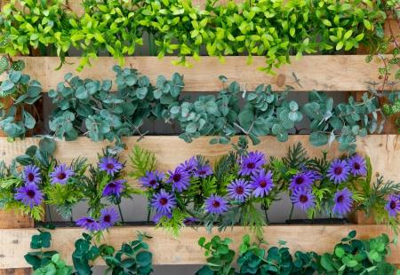 bei fiori e recinzione