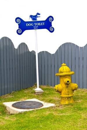 dog toilet photo
