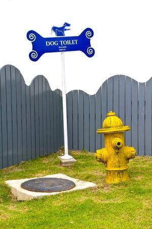 dog toilet photo