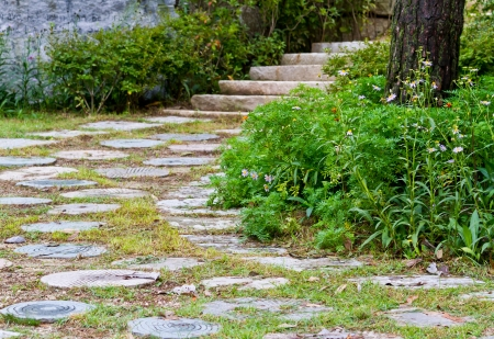 stone path with flowers photo