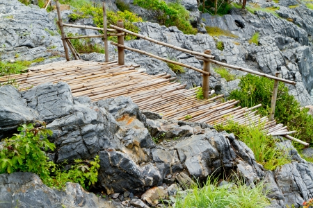 bamboo bridge on the rock  photo