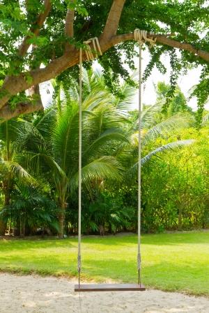 swing in garden photo