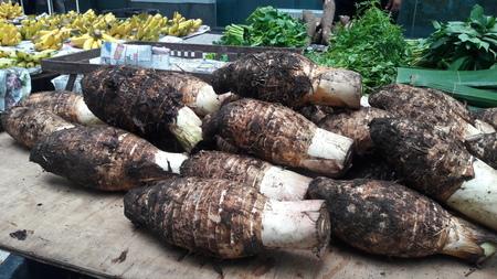 Taro, dasheen, cocoyam (Colocasia esculenta var. aniquorum, C. antiquorum var.esculenta). Stock Photo