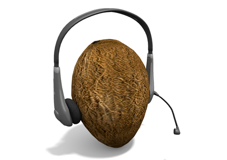 Rendering of a headphones on a coconut. The coconut mimics the human head. The composition is isolated on white background.