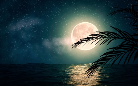 Sea with stars and full moon 3d illustration Banco de Imagens