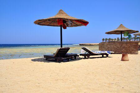 beach umbrella at marsa alam egypt