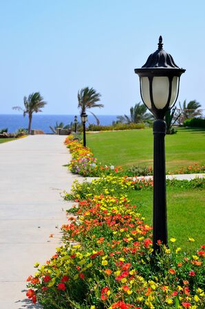 lampposts in a village in marsa alam egypt africa