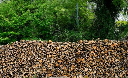 wood pile: Wood pile background Stock Photo