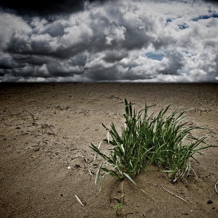 desertification: Desertification dramatic landscape