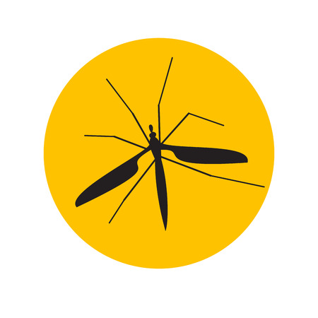 infected mosquito: Vector sign mosquito in the amber Illustration