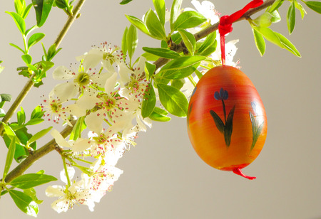 easter tree: Eggs on Easter tree