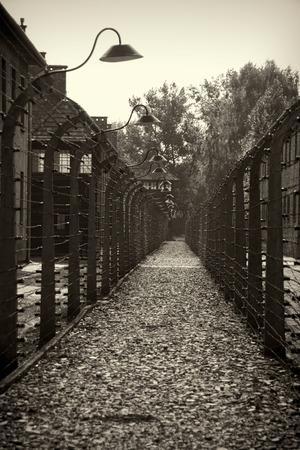 elektrischer Zaun: Elektrozaun in Nazi-Konzentrationslager Auschwitz I, Polen Editorial