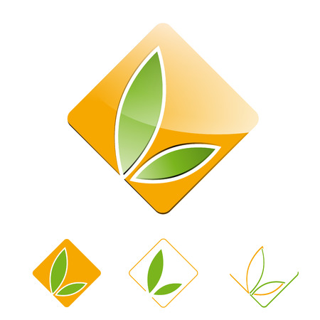 homeopathic: Vector sign leaves in a square Illustration