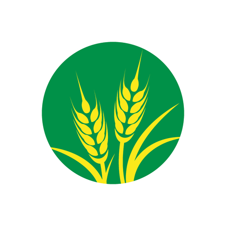Vector wheat on green circle Vettoriali