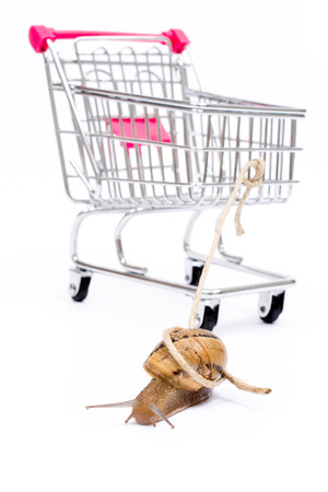 paradox: Slow shopping concept. Snail pull a cart Stock Photo