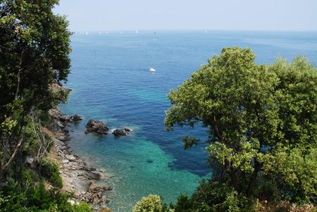elba: Beautiful panoramic view over Elba island in Italy