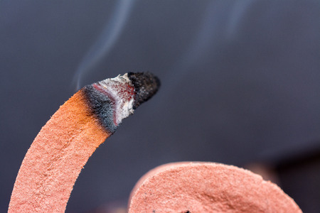 malaria: Burning mosquito coil repellent, spiral shape