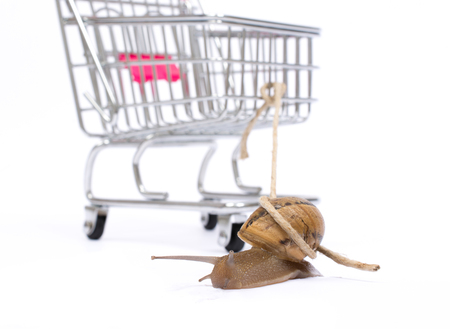 Slow shopping concept. Snail pull a cart with copy space