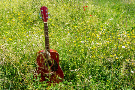 Close-up of acoustic guitar lying on a meadow and grass, vintage style with copy space