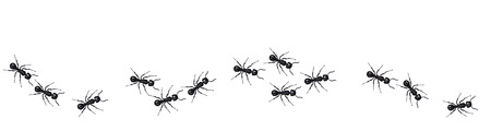 A line of worker ants marching in search of food. Vector banner Çizim