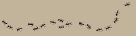 A line of worker ants marching in search of food. Vettoriali