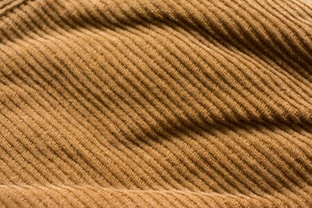 Velvet pant texture, cotton fabric. Pocket and rivet. Textile background