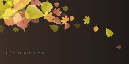 Autumn sale background, layout decorate with leaves of autumn. Poster and frame leaflet or web banner. Vector template. Illusztráció