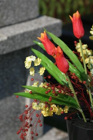 granit: floral tribute
