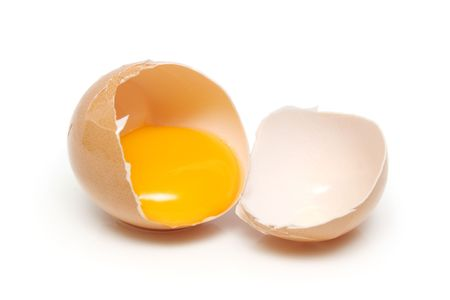 albumin: A egg tear into half with yolk and albumin.