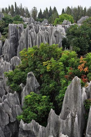 Scenery view at Shilin Stone Forest of Kunming, Yunnan, China.