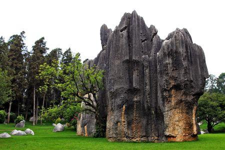 A elephant alike stone at Shilin Stone Forest of Kunming, Yunnan, China. Stock Photo