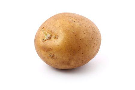 A germinating potato isolated on white background. Stock Photo - 7257775