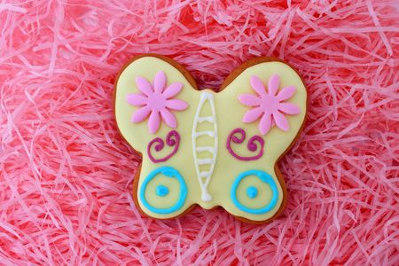 Close up of butterfly cookie on pink ribbons as background. photo