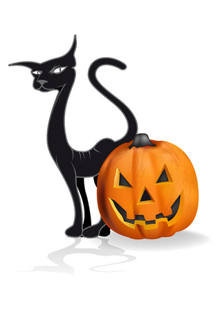 Pumpkin and black cat drawing halloween