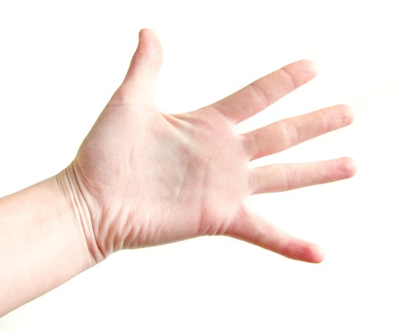 palm of the hand on a white background